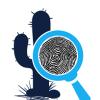 Desert Private Investigatons profile image