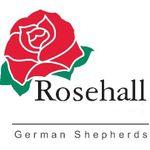 Rosehall Kennel German Shepherd Dogs profile image.
