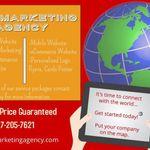 SaLi Marketing Agency profile image.