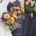 Village Florist and Events profile image.