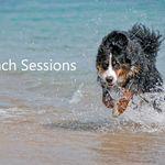Fetch Portraits profile image.