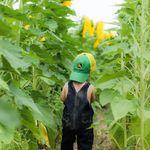 Gianna Rose Photography profile image.