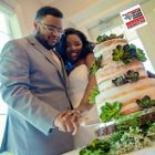 Taylor Made Cakes & Cuisine Catering