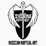 Systema South West profile image.