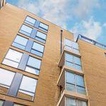 Stephen Bradbury Architects profile image.