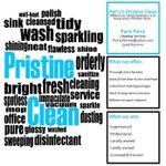 Perry's Pristine Clean profile image.
