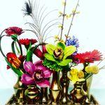 OSHi Floral Design - Nashville profile image.