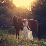 Hannah Draughan Photography profile image.