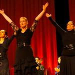 Claudia de la Cruz Flamenco Institute profile image.
