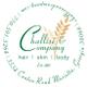 Challise & Company Hair~Skin~Body Salon & Spa logo