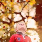 Sanshine Photography profile image.