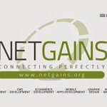 Netgains profile image.
