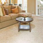 Master Carpet Cleaning  profile image.