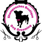 Shampooches Boutique Dog Grooming.