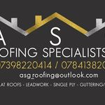 Asg roofing specialists limited profile image.