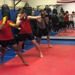 Bulldog Muay Thai and Kickboxing profile image.