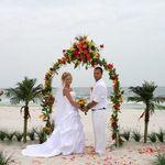 Tropical Weddings FL-Darryl Webb profile image.