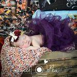 Sweet Pea Photography profile image.