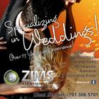 ZIMS Entertainment logo