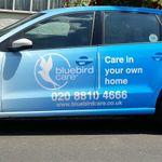 Bluebird Care (Ealing) profile image.