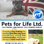 Pets for Life Limited profile image.