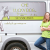 One Lucky Dog Mobile Grooming profile image