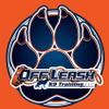 Off Leash K9 Training Ocala profile image