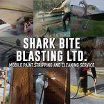 Shark Bite Blasting LTD. profile image.