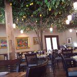 La Jolla Groves profile image.