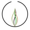 The Lantern profile image
