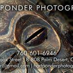 Hart Ponder Photography profile image.