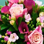 Jacobsen's Flowers & Gift Baskets profile image.