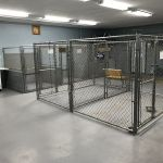Glacier Bark Kennels profile image.