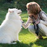 Best Dog Walking Asheville NC profile image.