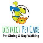 District Pet Care profile image.