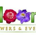 Bloom Flowers and Events profile image.