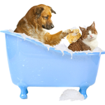 Chattahoochee Animal Clinic profile image.