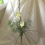 Bride & Bloom - Florist profile image.