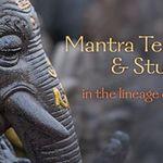 Mali Jay Yoga profile image.