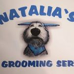 Natalia's Pet Grooming Service Brackley profile image.