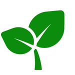 Organical - The SEO Experts profile image.