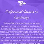 Busy Bees Cleaning Services  Ltd profile image.