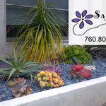 Savanah Landscape Construction & Design profile image.