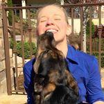 Animal Insight profile image.