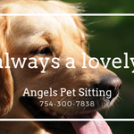 Angels Pet Sitting Service profile image.