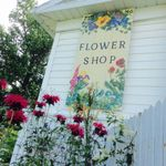 Forget-Me-Not Flower Shop profile image.
