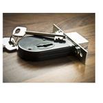 Regal locks profile image.