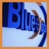 Blue Digital Printing & Reprographics profile image