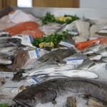 The Fresh Fish Shop profile image.
