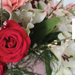 The Blossom Shop, LLC profile image.